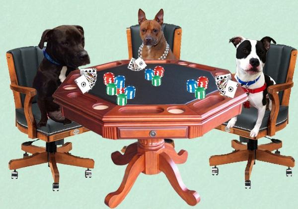 Bet On A Pittie Casino Night Fundraiser